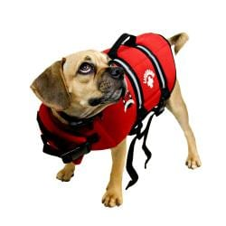 Paws Aboard-Red Designer Medium Doggy Lifeguard Jacket