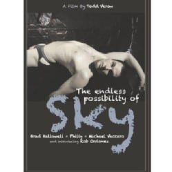 The Endless Possibility of Sky (DVD) 10837748