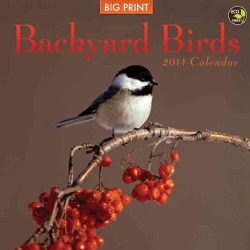 Backyard Birds 2014 Calendar (Calendar)