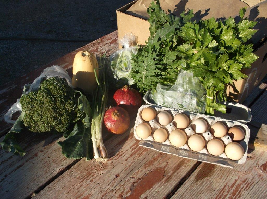 Meadow Valley Farm Mixed Produce and Eggs Basket (Local Delivery)
