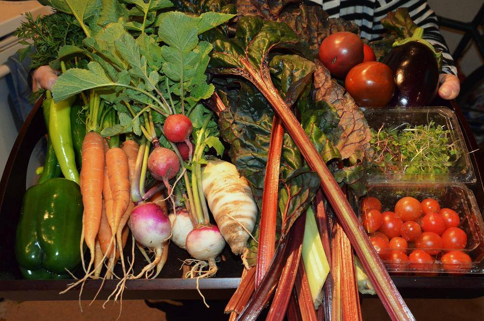 Weekly Subscription: Virginia Vegetable One-month CSA Produce Box (Local Delivery)