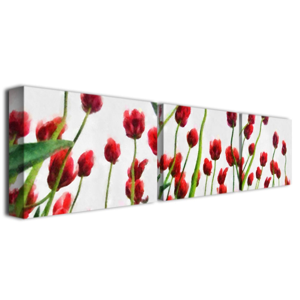 Michelle Calkins 'Red Tulips from Bottom Up' Canvas Art