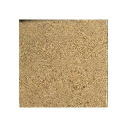 Millet White Proso 50lb