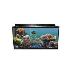 110xh Reef Ready Tank Black With Kit 48x18x30