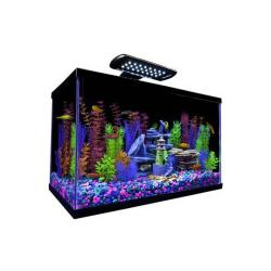 Tetra Glofish Kit 10 Gallon