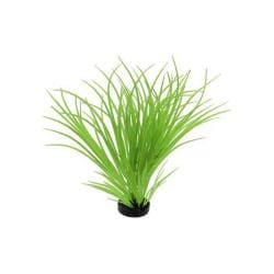 Colorburst Plant Ocean Grass Neon Green