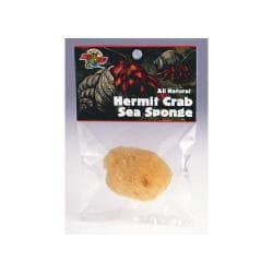 "Hermit Crab Sea Sponge - 2 To 3"" Dia"