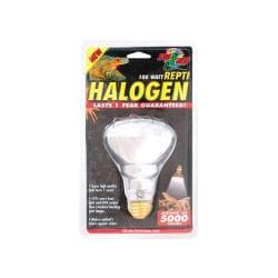 100 Watt Repti - halogen Inc Spot Lamp