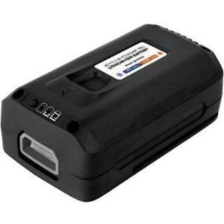 Sun Joe iON EcoSharp PRO 40 V 5.0 Ah Lithium-Ion Battery
