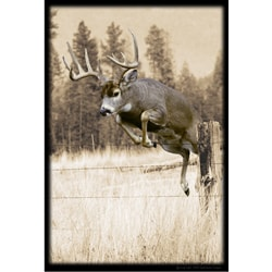 Upstream Images Whitetail Static Wall Graphic