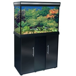 Delta Queen 29-gallon Black Aquarium and Stand