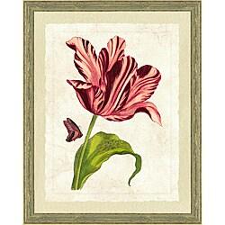 Botanical prints framed