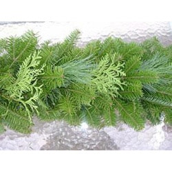 10-foot Fresh Balsam Cedar & Pine Garland