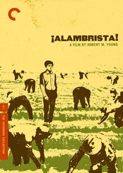 Alambrista! - Criterion Collection (DVD)
