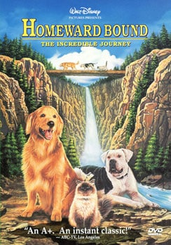 Homeward Bound - The Incredible Journey (DVD)