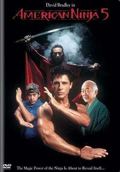 American Ninja 5 (DVD)