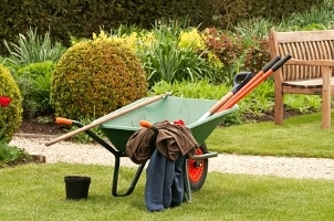 Top 5 Yard Care Tools