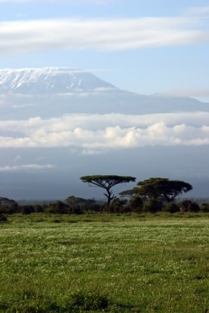 Mt Kilimanjaro Fact Sheet