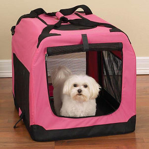 Protect Your Furry Friends with Pet Carriers
