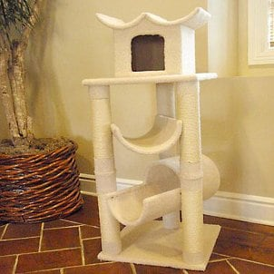 How to Buy Cat Furniture for Your New Cat