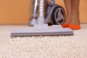 Canister Vacuum Cleaners Quick Facts