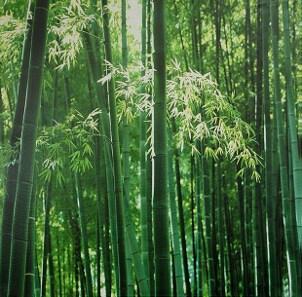 Top 5 Reasons to Choose Bamboo Furniture