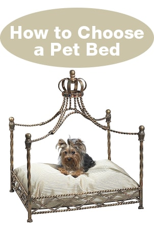 How  to Choose a Pet Bed