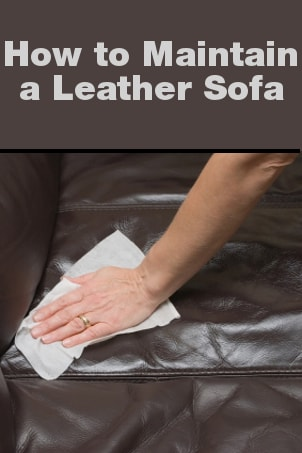 How to Maintain a Leather Sofa