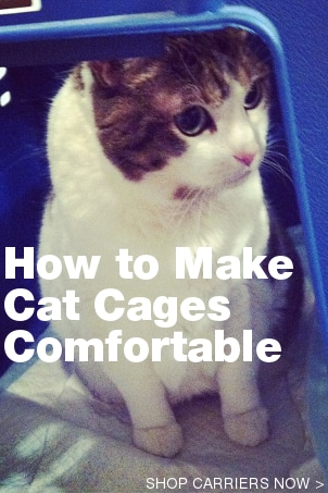 How to Make Cat Cages Comfortable for Cats