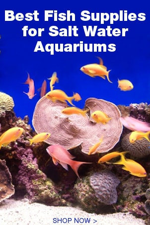 Fish supplies overstock shopping the best prices online for Fish supplies online
