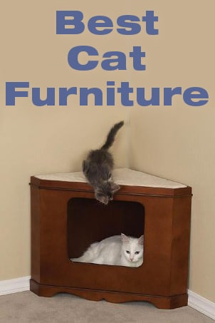 Best Cat Furniture