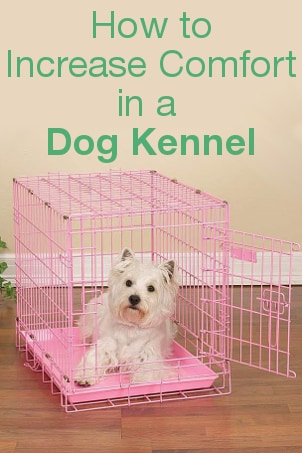 How to Increase Comfort in a Dog Kennel