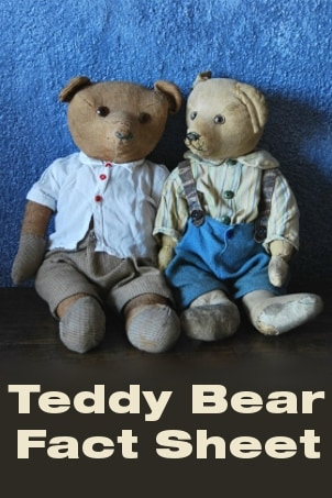 Teddy Bear Fact Sheet