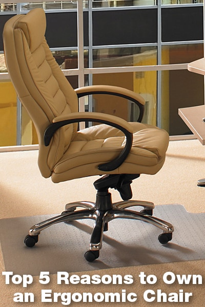 Top 5 Reasons to Own an Ergonomic Chair